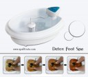 Ion Detox Foot Spa personal
